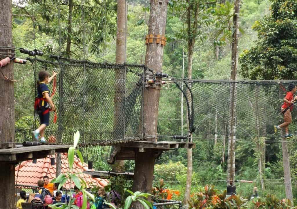 Приключенческий парк Скитрекс