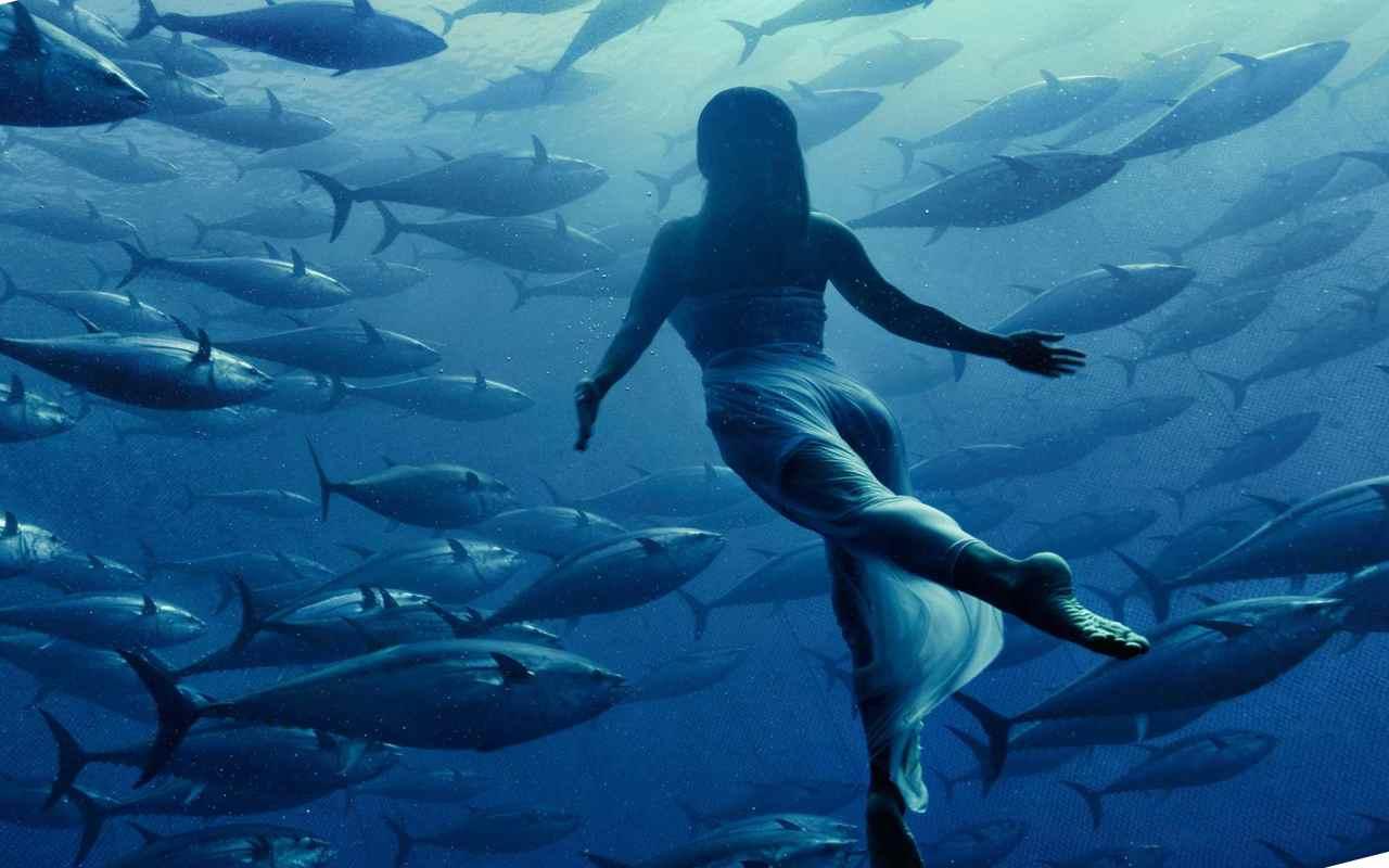 Искусство создается людьми в сочетании с артистизмом рыб