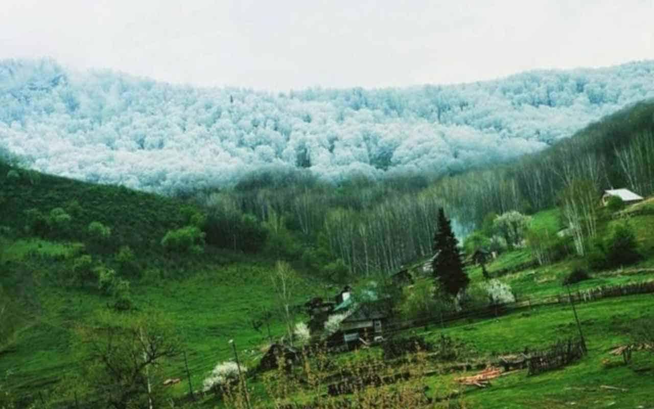Снег в горах и зелень внизу