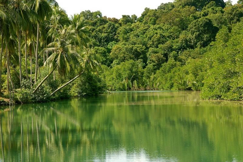 Национальный парк Реам, Камбоджа