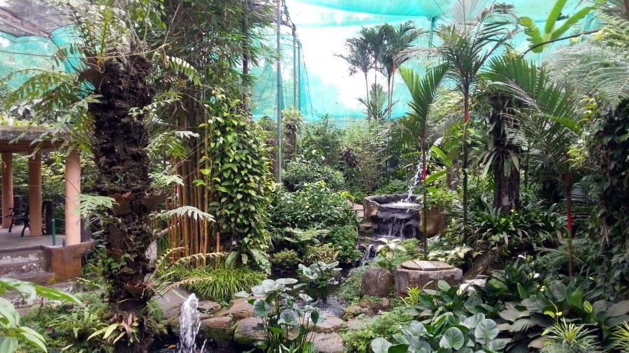 Сад бабочек, Малайзия