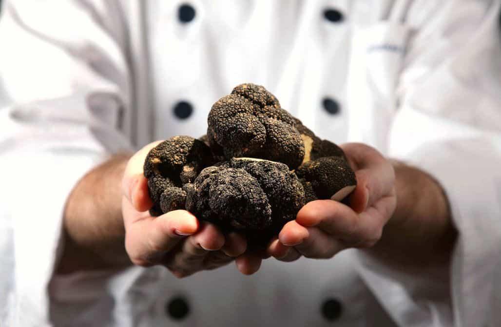 Черные трюфели