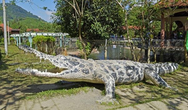 Ферма крокодилов, Нячанг