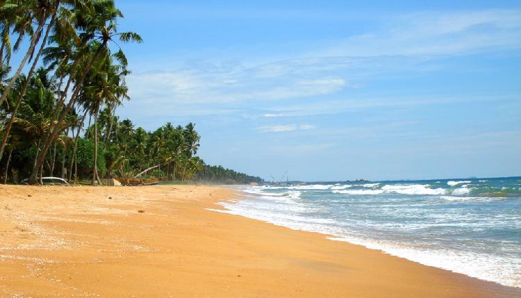 Пляж Ваддува, Шри-Ланка