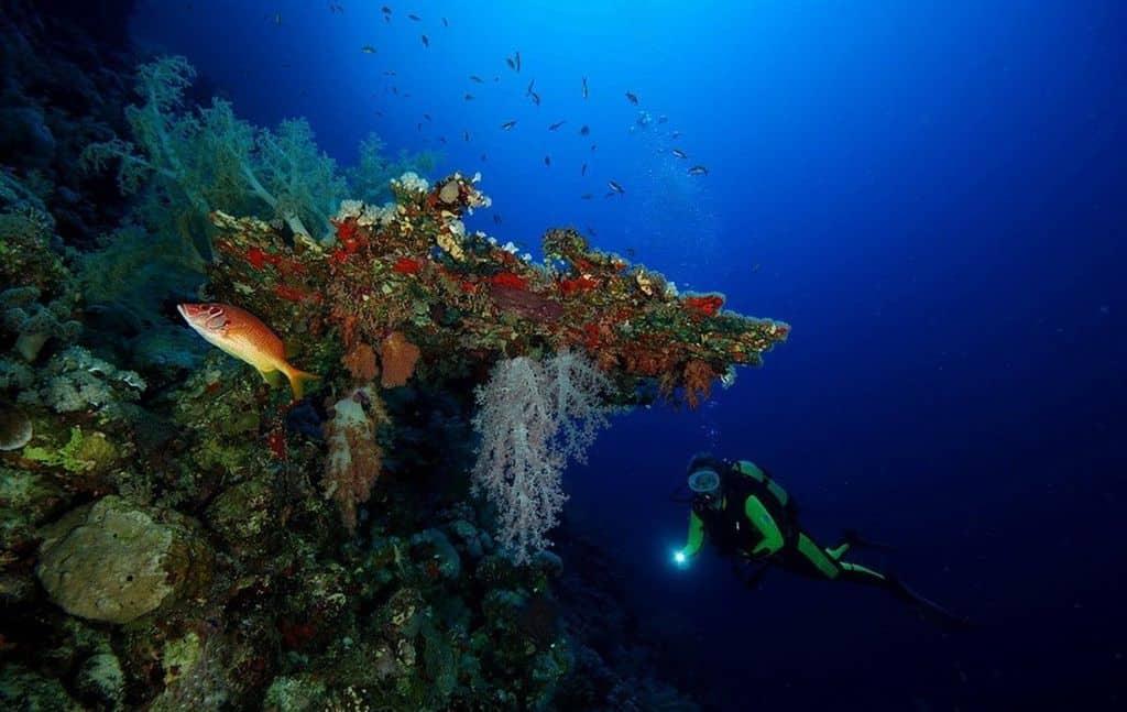 Подводный риф