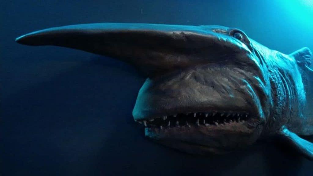 Акула гоблин