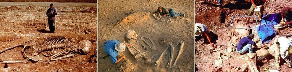 Раскопки скелетов великанов