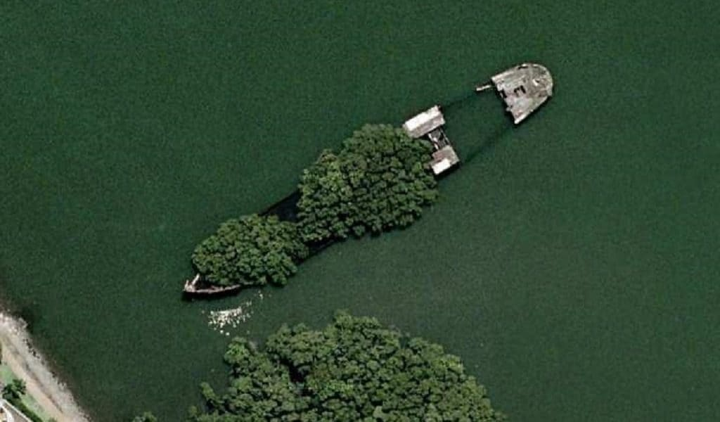 Заросший корабль (Сидней)