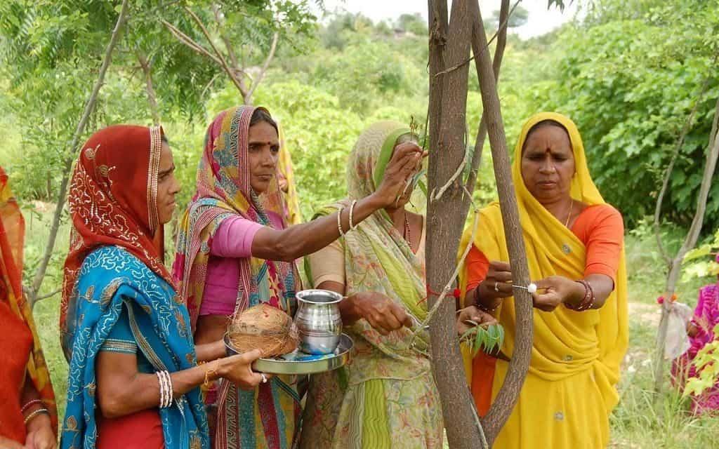 Свадьба с деревьями (Индия)