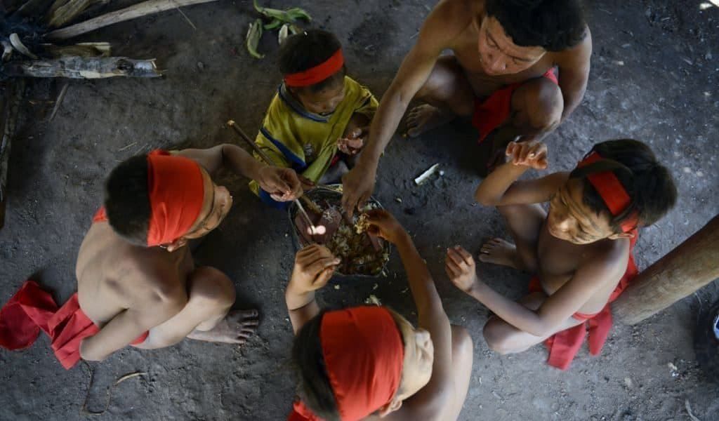 Суп из праха и костей в племени Яномами