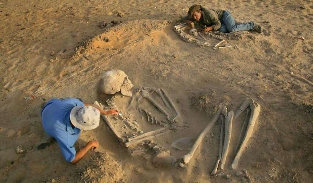 Находки археологов древних великанов