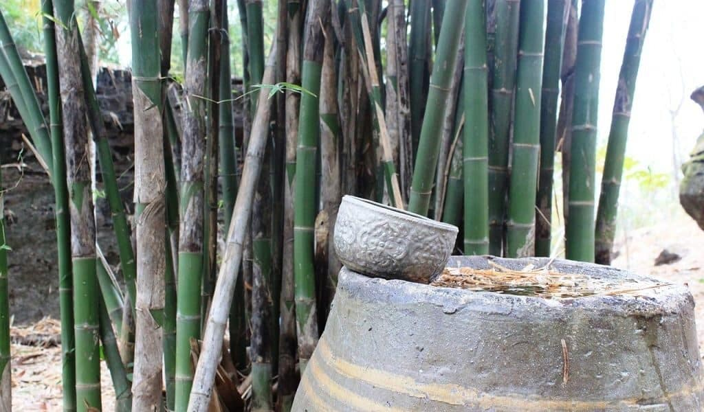 Бамбук как строительный материал в Эфиопии