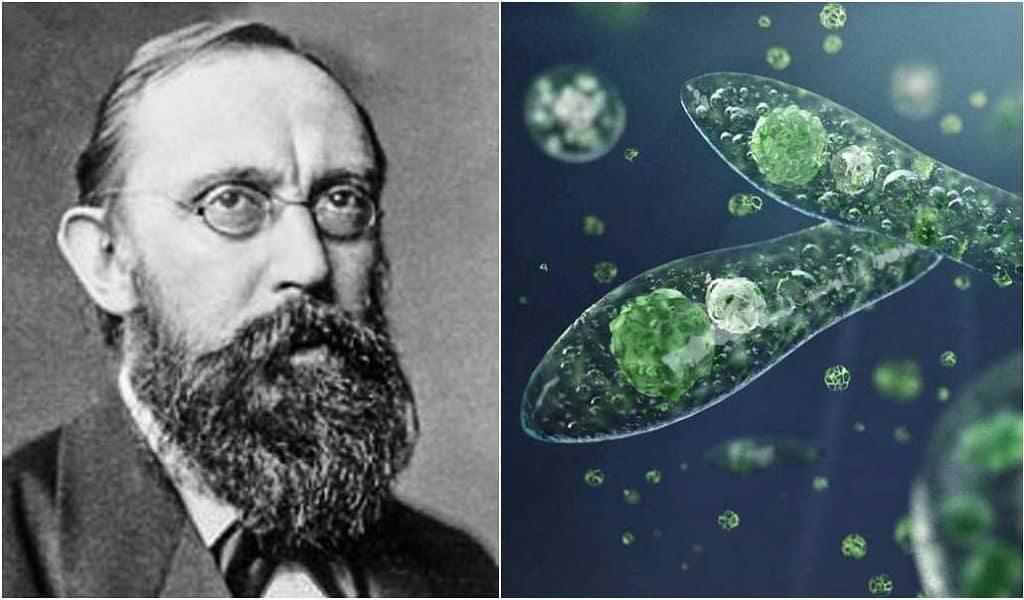 Немецким океанограф Виктор Гензен