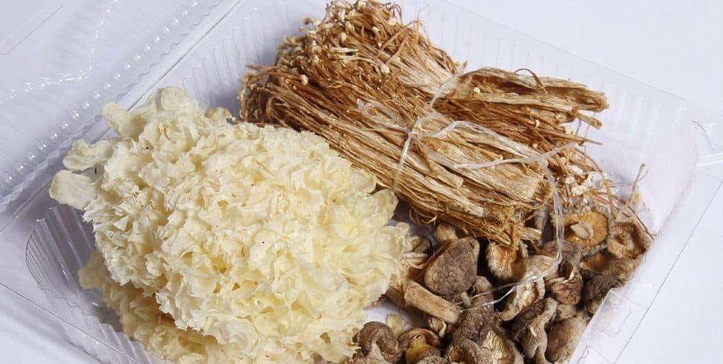 Полезные свойства съедобных грибов кораллов