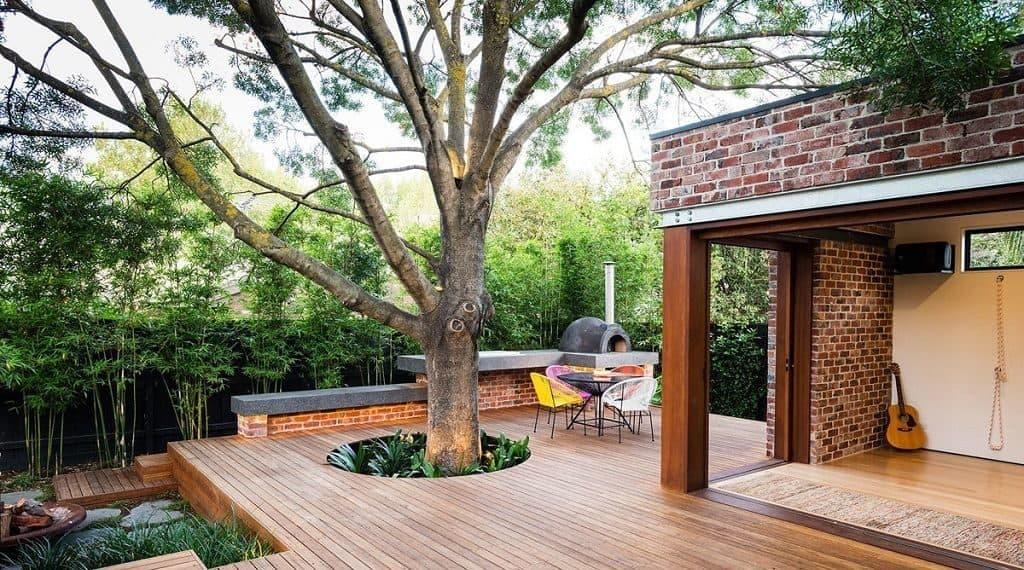 Деревья у дома