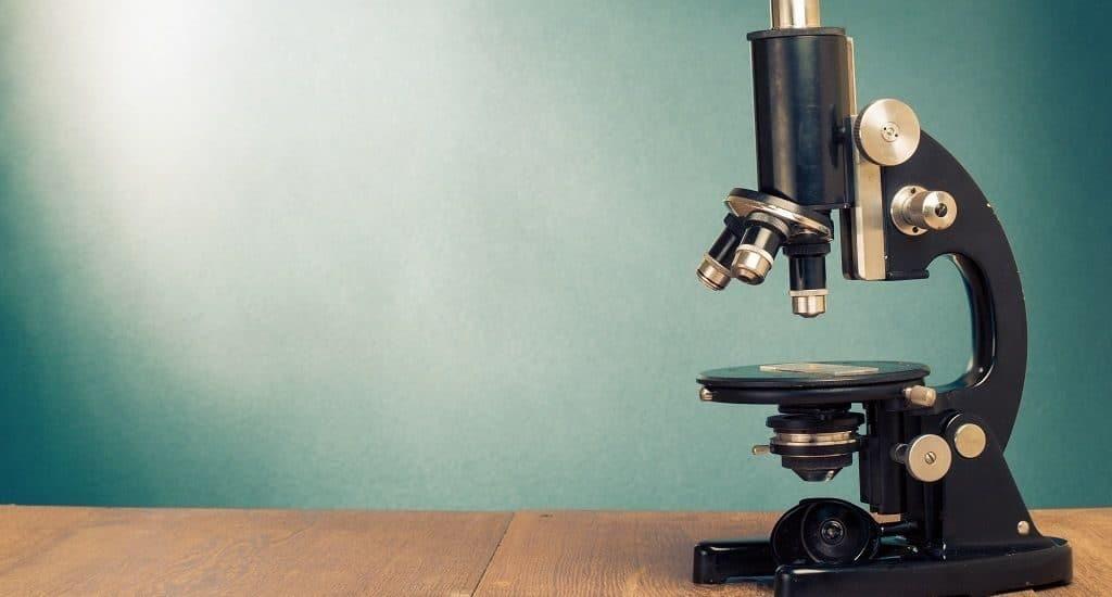 Глобус под микроскопом