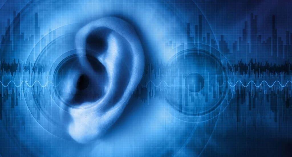 Как человек воспринимает звуки