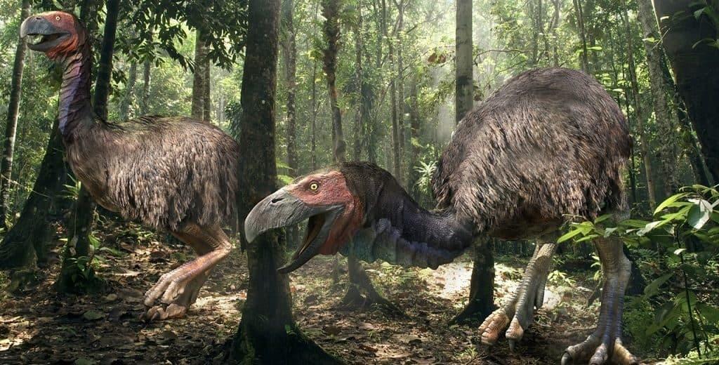 Древние предки страусов