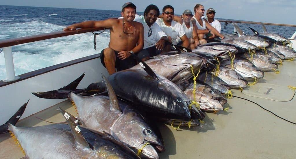 Ловцы тунца