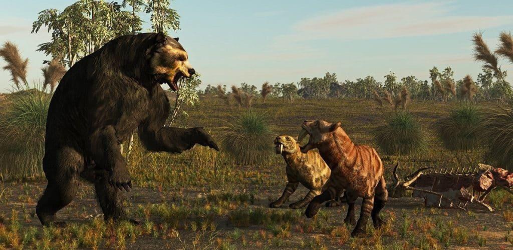 Медведь и саблезубые тигры