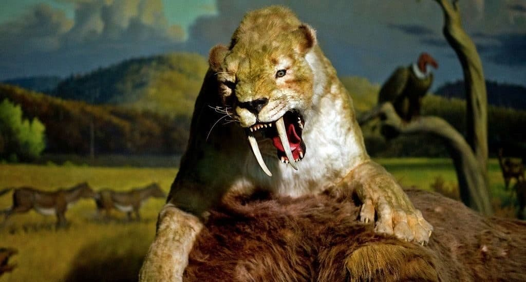 Самое большое животное за всю историю земли
