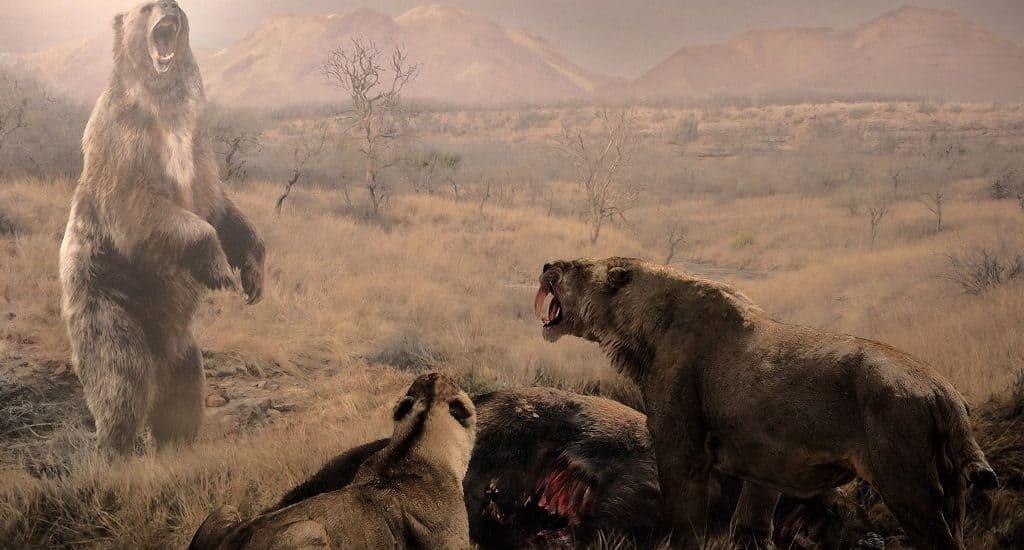 Доисторический короткомордый медведь