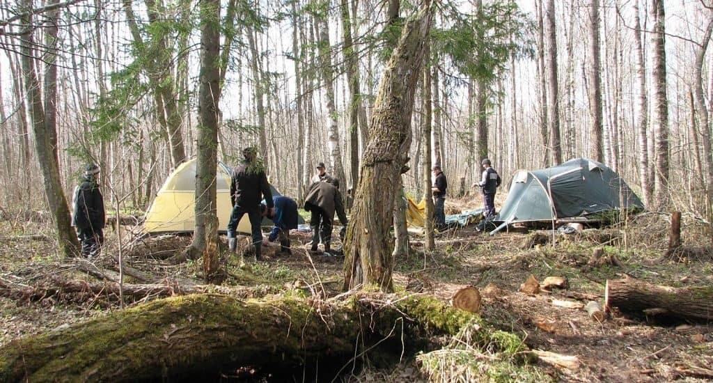 Новгородские леса в Долине смерти