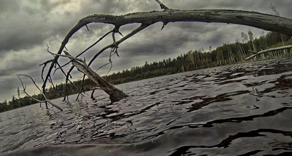 Озеро Смердячее