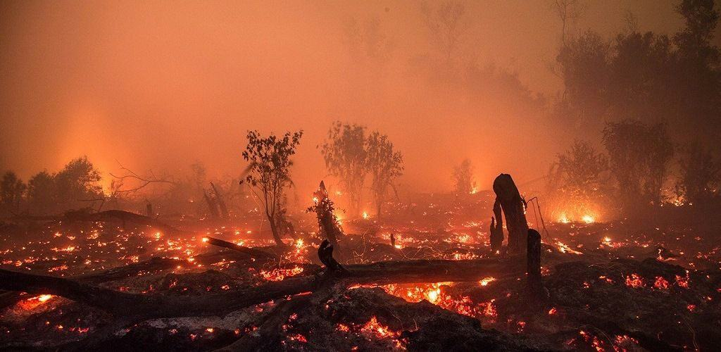 Калимантан - большой пожар