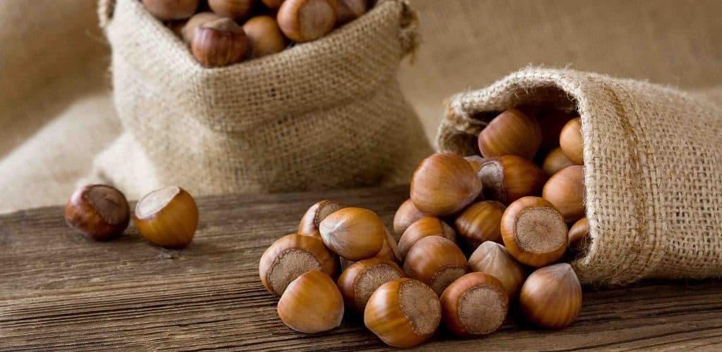 Лесной орех - фундук