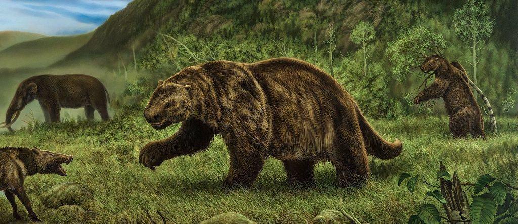 Древний предок ленивца
