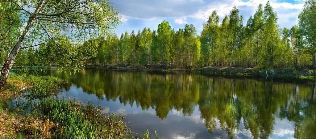 Российские реки