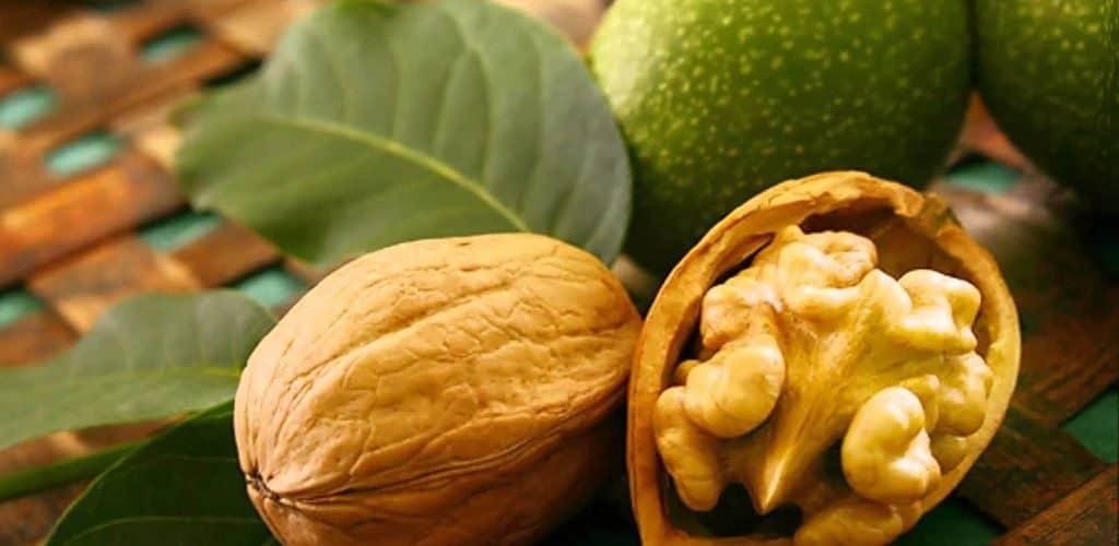 Где растет грецкий орех
