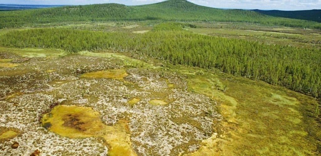 Тунгусский метеорит - интересные факты
