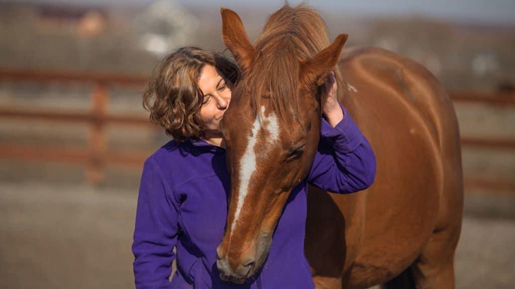 Общение человека и лошади