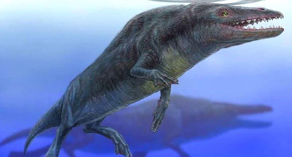 Пакицеты - предки китов