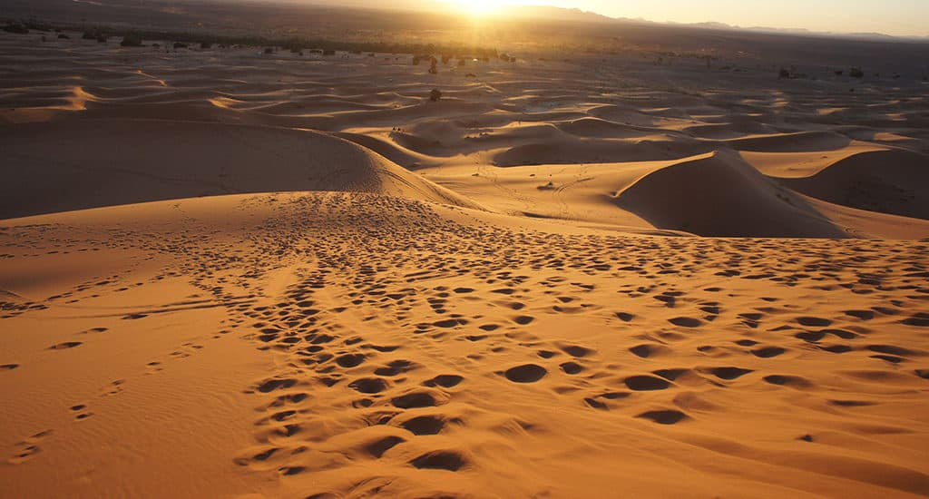 Интересные факты о Сахаре