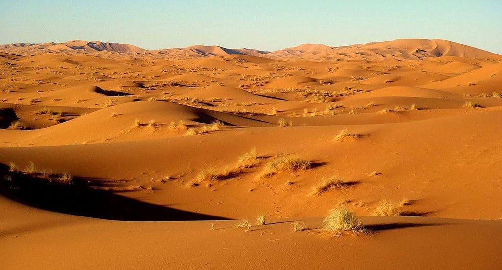 Сахара увеличивается