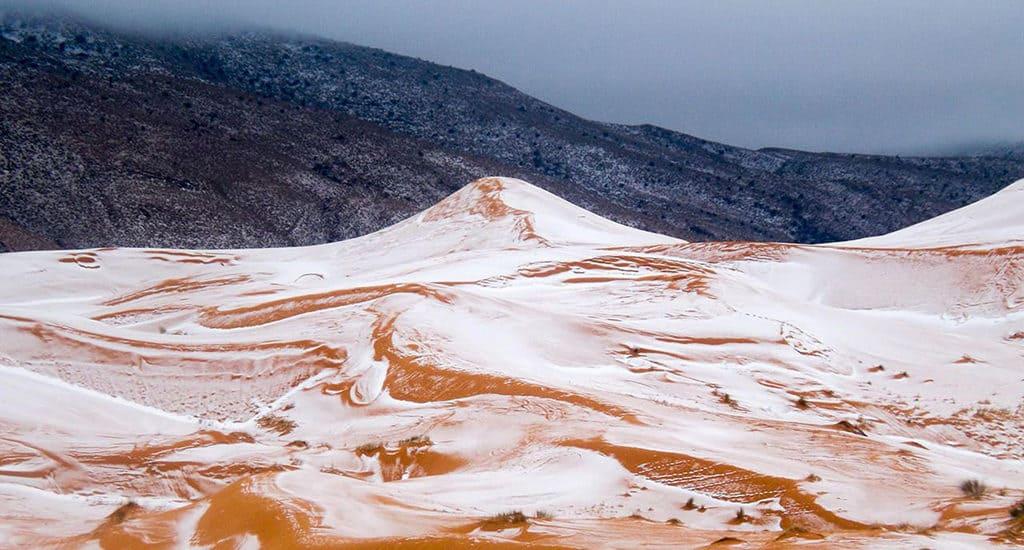 Заморозки в Сахаре