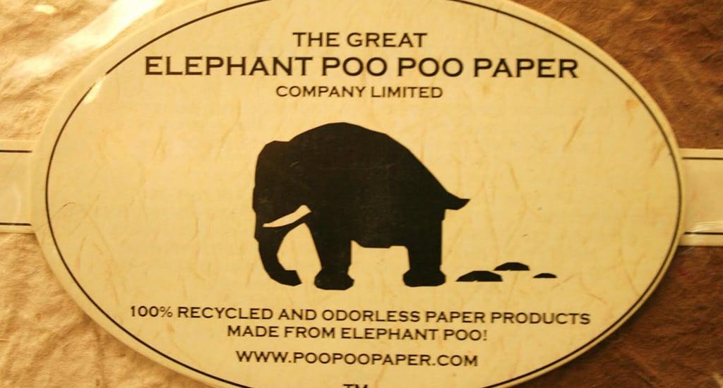 Бумага из экскрементов слона