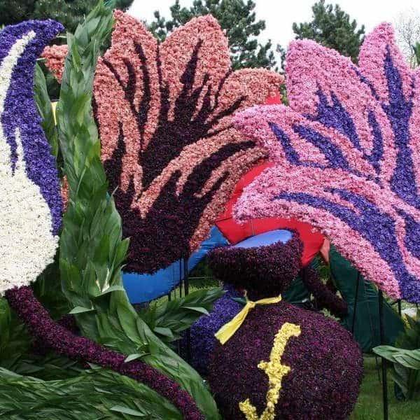 Чианг-Май - фестиваль цветов