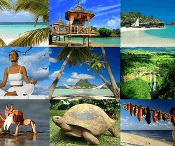 Коллаж фото о. Маврикий