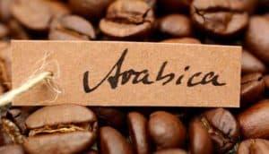 Кофе Арабика – ценный сорт кофе