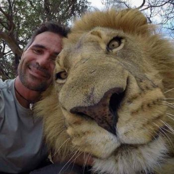 Селфи со львом