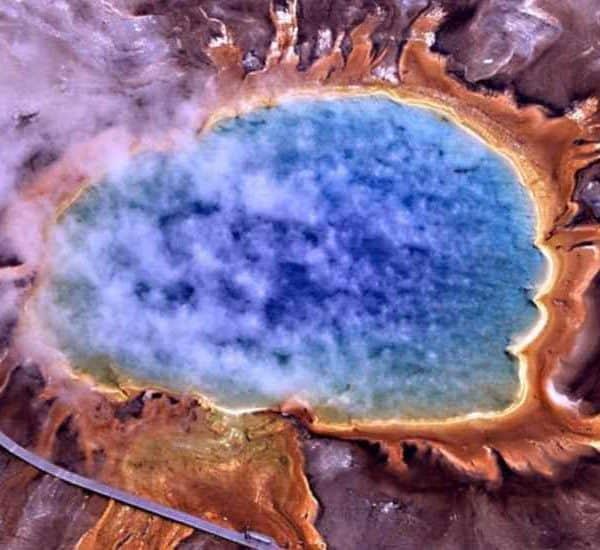 Необычные бактерии. Интересные факты о микроорганизмах