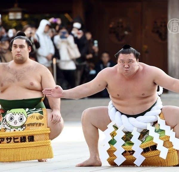 Борцы сумоисты