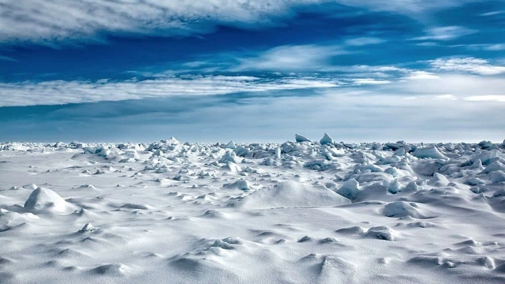 На глобусе и карте покажите Северный и Южные полюсы. Один полюс находится в океане. Как называется этот океан? А где находится другой полюс?