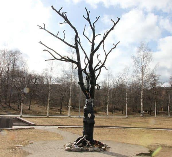 Дерево с ухом в Петрозаводске